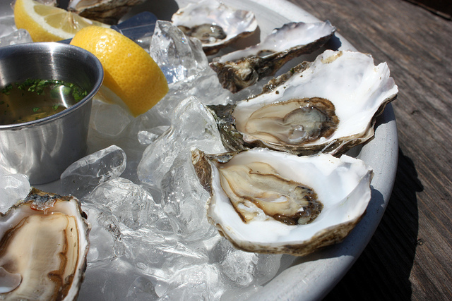 "On Oysters, Petaluma and making time for ""us."""